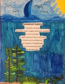 Braeden Lewis, 4th grade, Honorable Mention