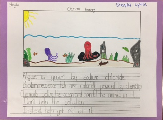 Shayla Lytle, 2nd grade, 1st place